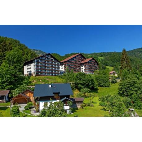 Alpenhotel DACHSTEIN*** - Bad Goisern